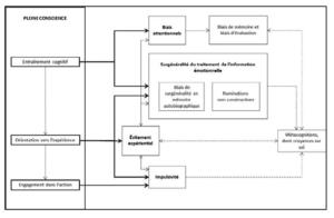 Figure 2 : Techniques de pleine conscience et impact sur les processus psychologiques Deplus & Lahaye (2015)